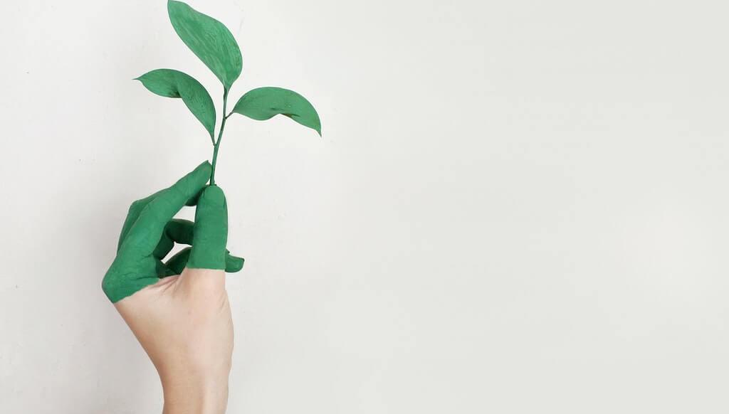 Mit Sale and lease back können nachhaltige Investitionen finanziert werden.