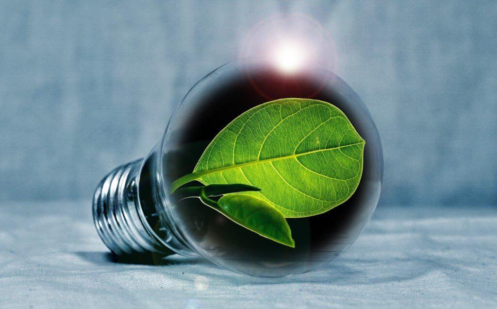 Grüne Energie gewinnt immer weiter an Bedeutung und ist bereits bis in die politischen Ebenen vorgedrungen.